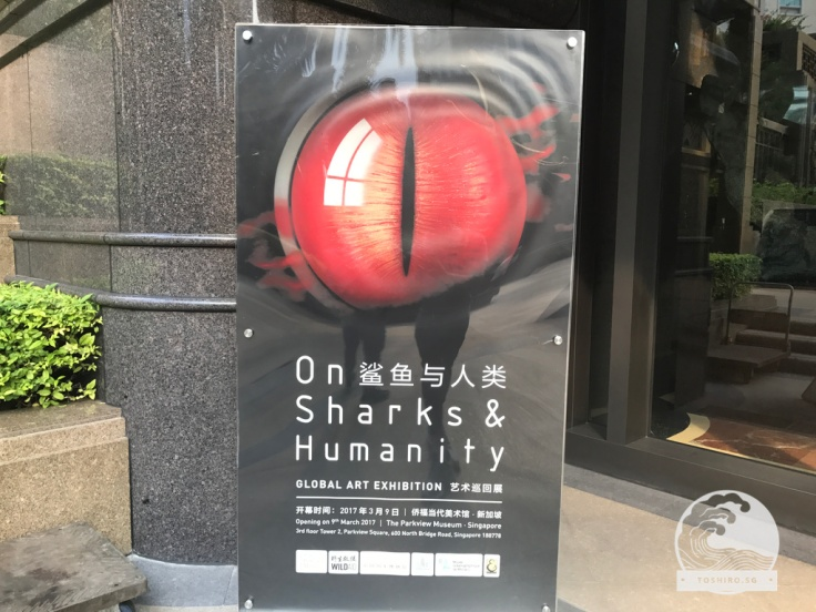 On_Sharks_and_Humanity (9)